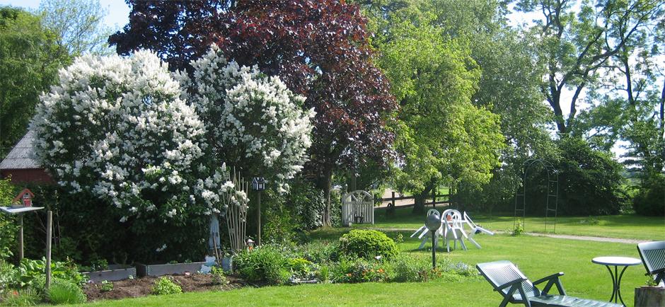 trädgård1-940